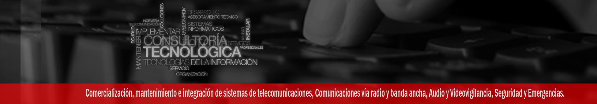 Comercialización, mantenimiento e integración de sistemas de telecomunicaciones, Comunicaciones vía radio y banda ancha, Audio y Videovigilancia, Seguridad y Emergencias.